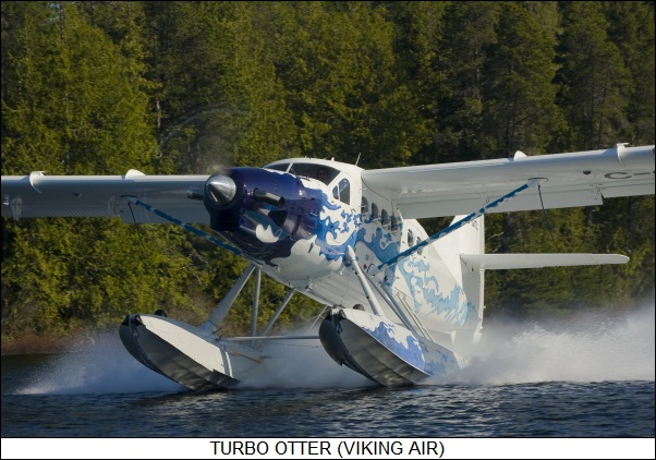 Turbo Otter